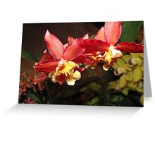 Small and Strong Greeting Card