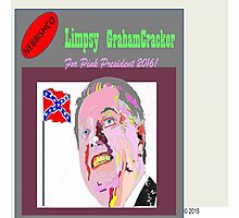 Limpsy Grahamcracker Photographic Print