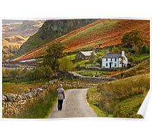 Nant Ffrancon, Snowdonia, Wales Poster