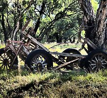 Final Resting Place - Torrumbarry  by Dave Callaway