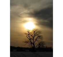 Late Afternoon Sky at Caumsett State Park Photographic Print