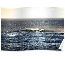 sea wave. tasmania Poster