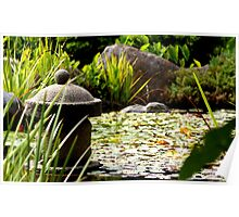 Japanese Garden - South Tce, Adelaide Poster