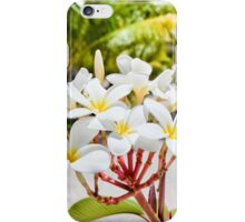 Tahiti Beach Plumeria iPhone Case/Skin