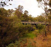 Bow Bridge - often crossed but seldom seen by georgieboy98