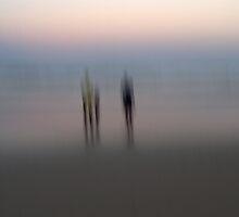 Stillness and Motion by Kitsmumma