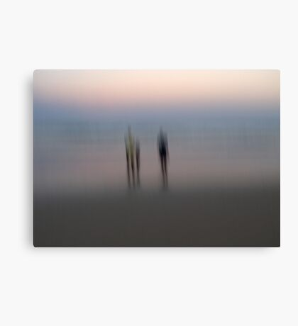 Stillness and Motion Canvas Print