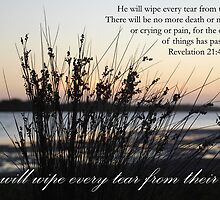 He will wipe every tear from their eyes by Catherine Davis