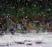 Splattering Rain by Anthony Roma