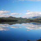 Lake Burbury - A Landscape - West Coast of Tasmania by Kate Hibbert