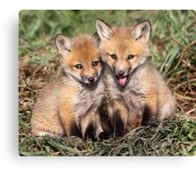 Laughing At The Photographer / Fox Kits Canvas Print