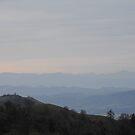 misty mountain morning by Lenny La Rue, IPA