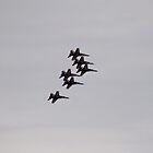 U.S. Navy Blue Angels by Anthony Roma