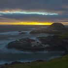 The Nobbies - Phillip Island by Timo Balk