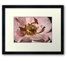 With Hope Framed Print