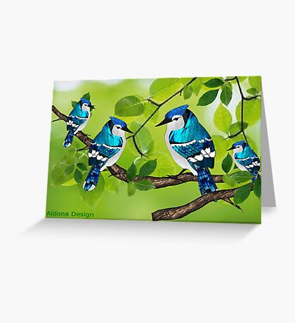 Blue jays (3631 views) Greeting Card