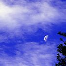 Mid Day Moon by Marius Brecher