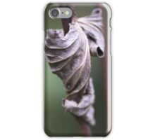 See the Beauty in a Dead Leaf iPhone Case/Skin