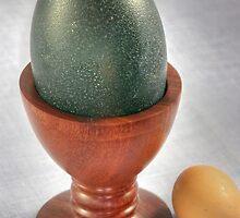Emu egg cup by BigAndRed