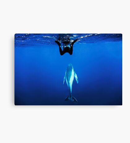 Coming up for air Canvas Print