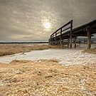 The Foam Phenomenon - Lake Clifton WA by Chris Paddick