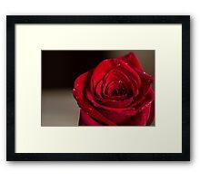 Romantic red rose macro photo Framed Print