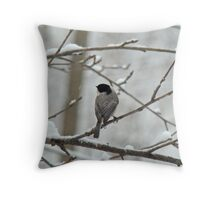 Black-Capped Chickadee (Poecile atricapillus) Songbird Throw Pillow