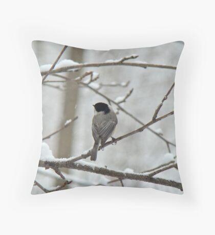 Black-Capped Chickadee (Poecile atricapillus) Songbird Throw Pillow