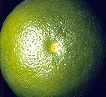 Grapefruit - www.lizgarnett.com by Liz Garnett
