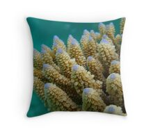 Gardens Below – Diving in the Seychelles Throw Pillow