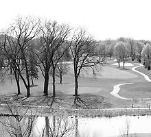 Overlooking the Fairway by Anthony Roma