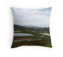 Lake fish view Throw Pillow