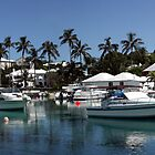 Panoramic view of Flatts Village, Hamilton Parish, Bermuda by John Gaffen