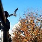 Urban Flight by Pippa Carvell