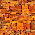 wood by neil harrison