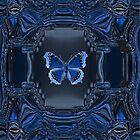 """B"" Is For Butterfly by Deborah Lazarus"