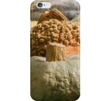 pumpkin in autumn iPhone Case/Skin