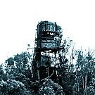 Industrial Tower in a Sea of Trees by naddyt