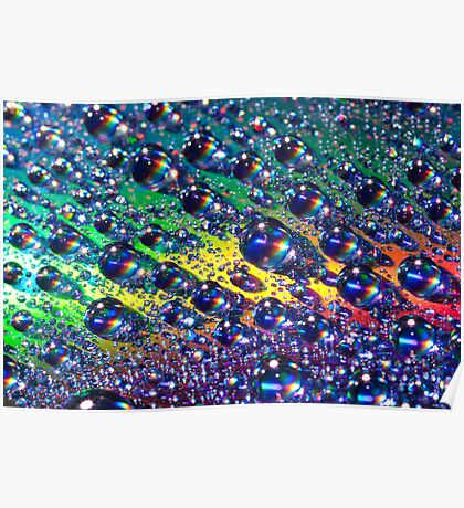 Macro of Water Droplets Poster