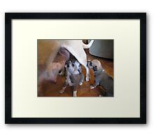 they keep coming Framed Print