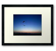 """""""Birds in Flight"""" Framed Print"""