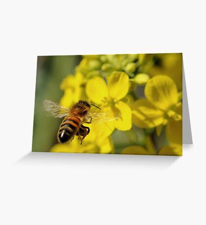 Bee Free Greeting Card