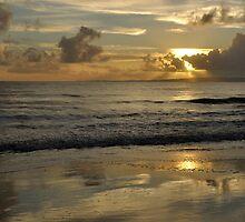 View to Moreton Island - Australia by Barbara Burkhardt
