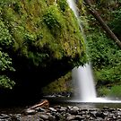 Drift Creek Falls in Oregon by OrPhotoJohn