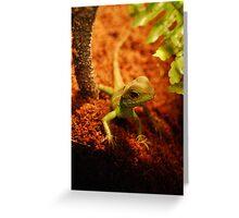 Pocket Dragon Greeting Card