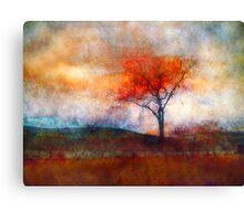 Alone in Colour Canvas Print