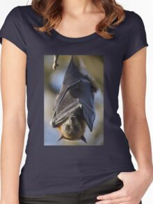 Grey-Headed Flying Fox Hanging Women's Fitted Scoop T-Shirt
