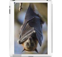 Grey-Headed Flying Fox Hanging iPad Case/Skin