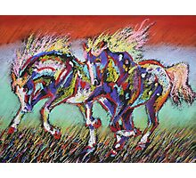 Wild Pastel Ponies Photographic Print