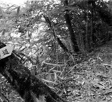uphill by moyo